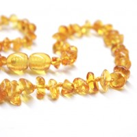 10 Polished Nuts Style Honey Amber Baby Teething Necklaces