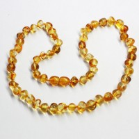 Lot of 10  Polished Baraque Style Honey Color Baltic Amber Necklaces