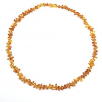 10 Polished Nuts Style Honey Color Baltic Amber Necklaces