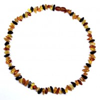 10 Polished Nuts Style Multicolor Baltic Amber Necklaces