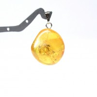 Baltic Amber Pendant  Lemon Color With Plants Inclusions 46