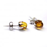 Honey Baltic Amber Stud Earrings Silver Plated