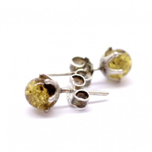 Greenish Baltic Amber Stud Earrings Silver plated