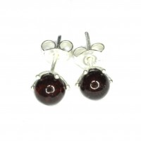 Cherry Color Baltic Amber Stud Earrings Silver Plated