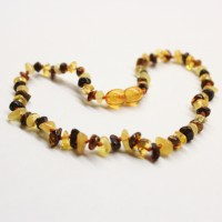 Polished Nuts Style Multi-color Baltic Amber Teething Necklace