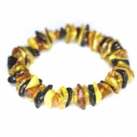 Polished Split Style Multi color Baltic Amber Adult Elastic Healing Bracelet
