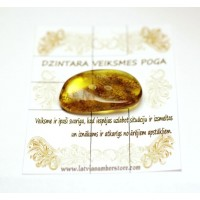 Natural Baltic AMBER TALISMAN FOR LUCK