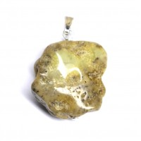 Baltic Amber Pendant / Amulet Light Green / Milky Shade Color With Plants Inclusions